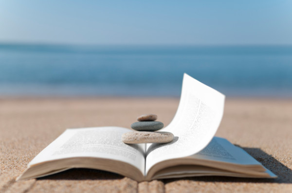 You are currently viewing Looking For Something To Do On Vacation? Take These Books With You!